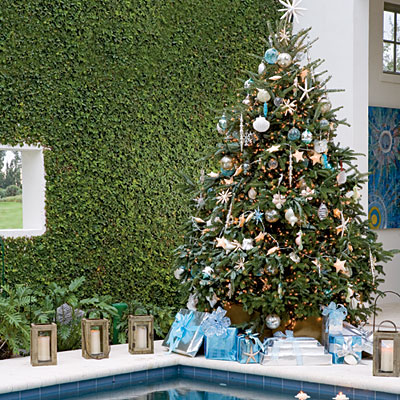 Good A Real Christmas Tree Is The Environmentally Sound Choice For Your Family  This Christmas